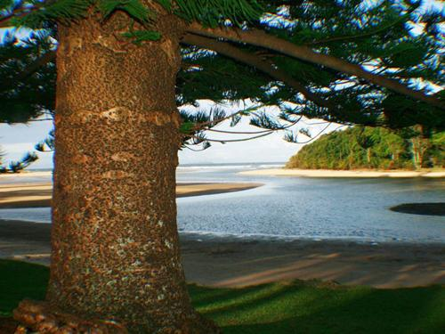 Moonee Beach - Coffs Harbour